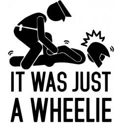 It was just a wheelie L 3234