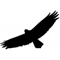 Vogel Silhouette Fenster L 3235