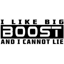 I LIKE BIG BOOST AND I CANNOT LIE